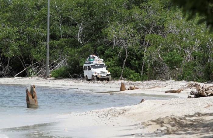 La relocalización de corales y plántulas atrazan comienzo de obras en vía a Playetas.