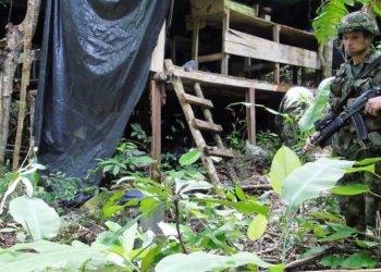 Ejército destruye varios laboratorios para procesar coca en el sur de Bolívar.