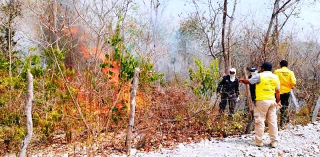 Controlado incendio forestal en el sur de Bolívar que arrasó unas mil hectáreas de vegetación