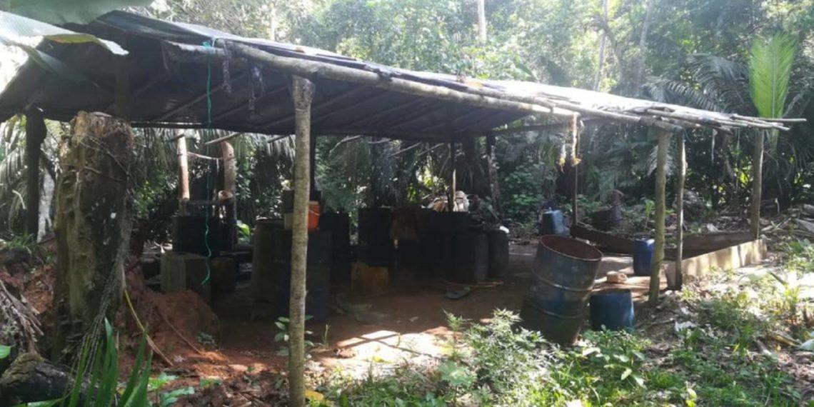 Desmantelan laboratorio para el procesamiento de coca en el sur de Bolívar.