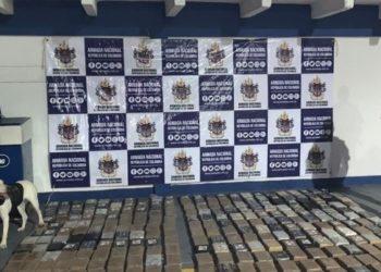 Incautan 439 kilos de cocaína en una finca de Turbaco, Bolívar.