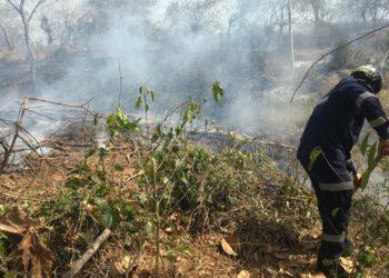 Controlado incendio forestal en jurisdicción de Mahates, Bolívar.